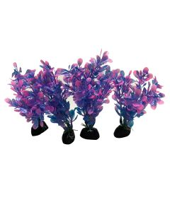 Aquatic Plant Purple Small Leaves For Aquarium Decoration Pack Of 5