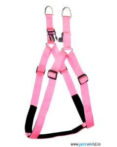 Kennel Doggy Articles Padded Soft Nylon Adjustable Harness & Lead Set - Medium