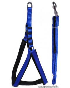 Nylon Dog Harness and Leash Set XLarge