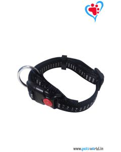 Petsworld Dog Collar + Leash Set (Medium) FP-200002A-L