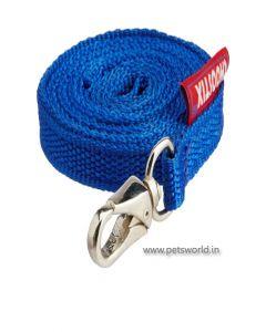 Choostix Flat Dog Belt and Collar Set Medium