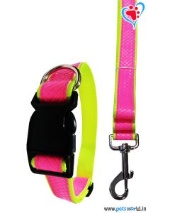 DOGEEZ Bright Color Dog Collar And Leash 3