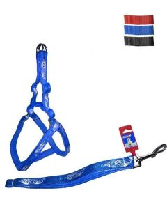 FEKRIX Map Leash Plus Harness Large