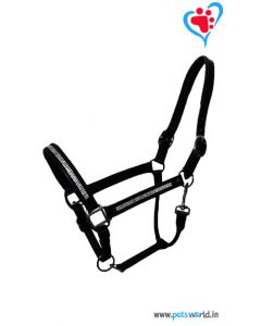 Petsworld Leather Horse Halter MaxxHH034 (Black)
