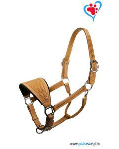 Petsworld Leather Horse Halter MaxxHH010 (Brown)