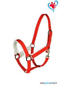 Petsworld Leather Horse Halter MaxxHH023 (Red)