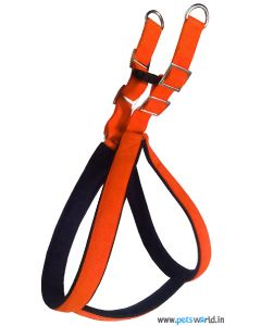 DOGEEZ Padded Soft Nylon Adjustable Harness & Leash Set