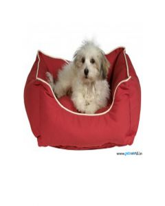 Dog Gone Smart Lounger Bed Red LxW : 37x31 inch