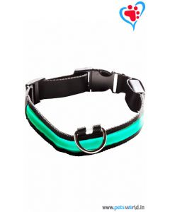 Petsworld LED Dog Collar - Green