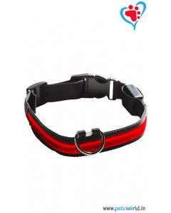 Petsworld LED Dog Collar - Red