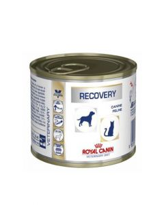 Royal Canin Veterinary Diet Wet Recovery Can Dog Food 195 gm