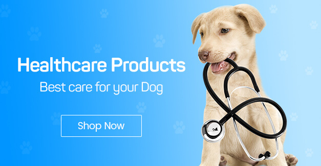 Buy Pet Food and Accessories from India's Leading Pet